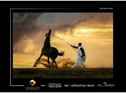 ترويض حصان.. تصوير محمود المسلاتي.