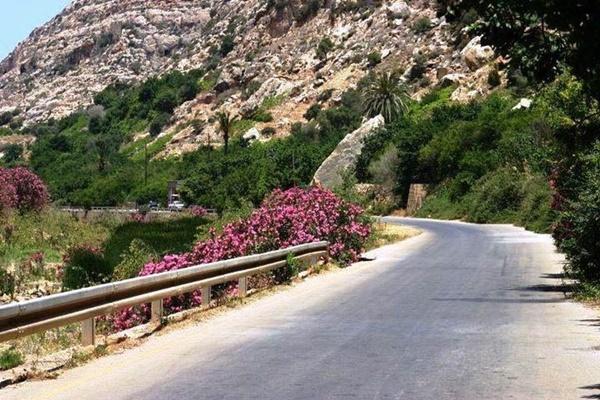 الصورة: وادي درنة من منشورات السيد عبيده يوسف الدرناوي