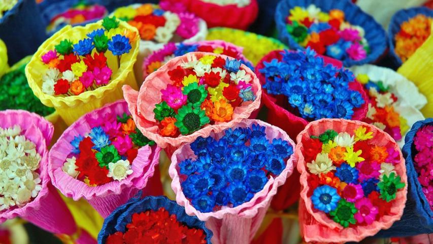 زهور ملونة (الصورة: عن الشبكة)
